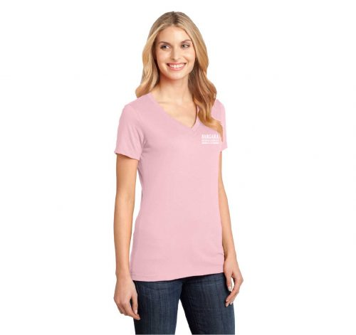 Ladies Perfect Weight V Neck T-Shirt